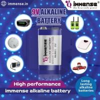 LR6 Alkaline battery  LR6 Battery  Immense Power